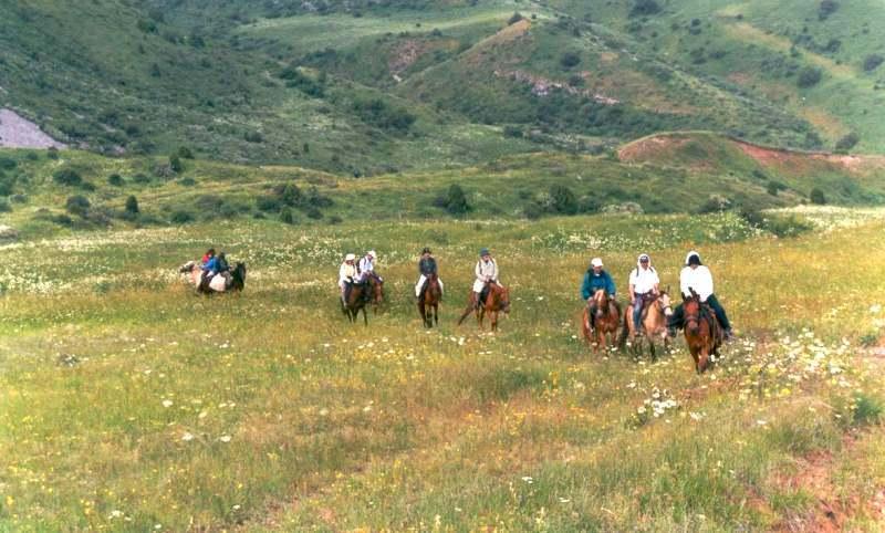 Конный маршрут в заповеднике Аксу-Жабаглы в ущелье Киши-Каинды.