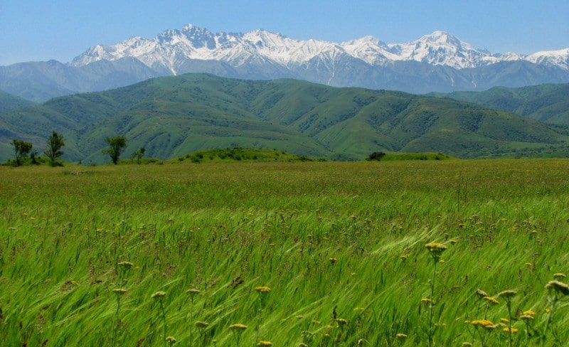 Nature of Zailiysky Ala-Tau.