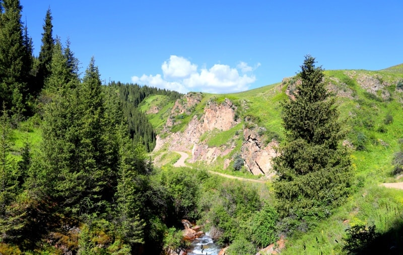 In Turgen gorge.