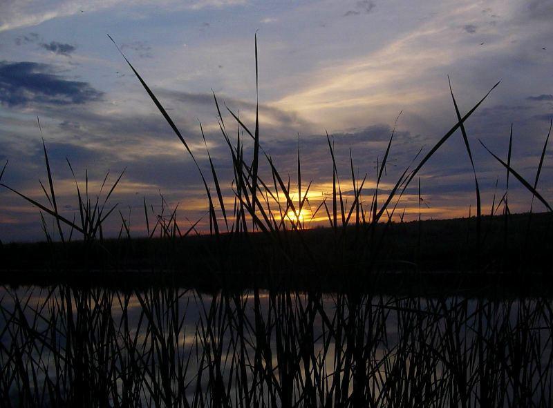 River Nura.
