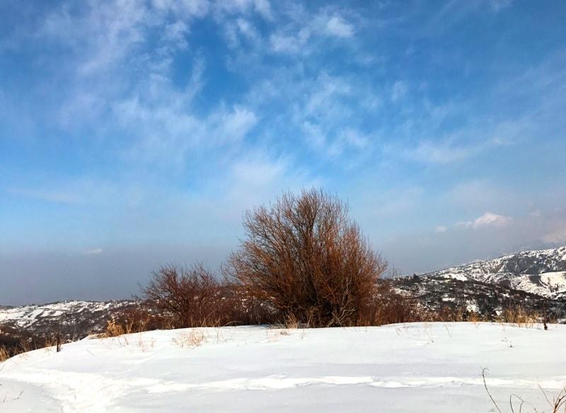 Климат парка Каркаралы.