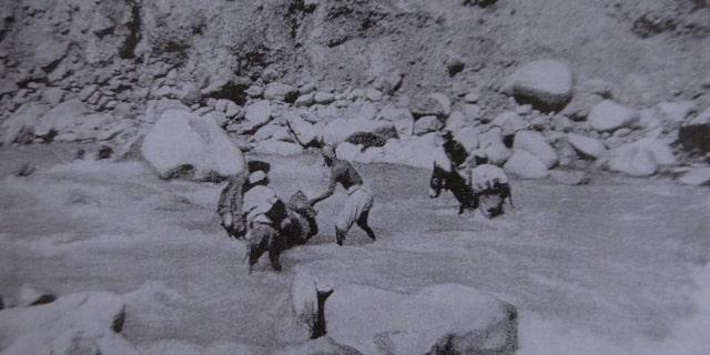 Преодоление препятствий при переходе через горную реку. Фотография конца XX века.
