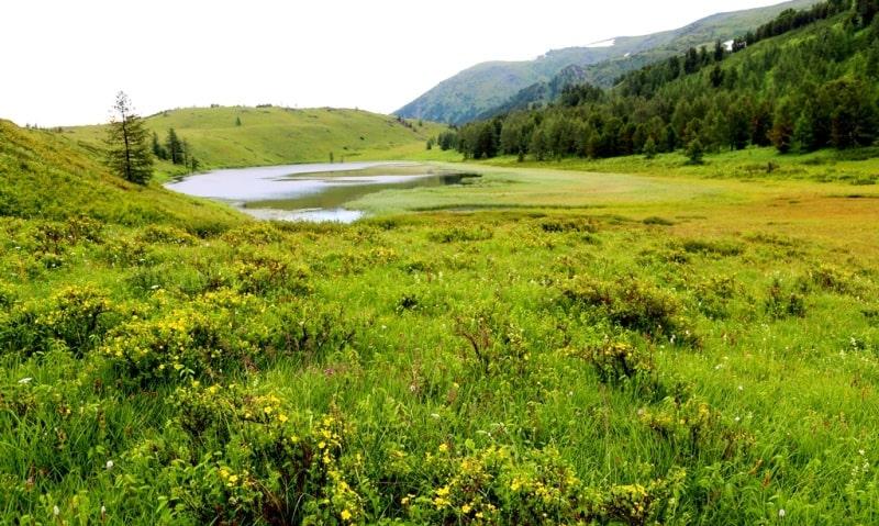 The lake Burkhat and environs.