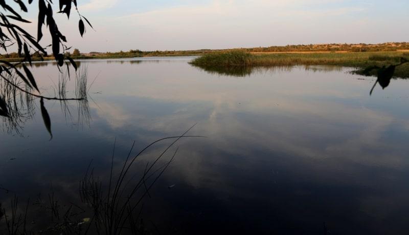Окрестности озера Коргалжын.