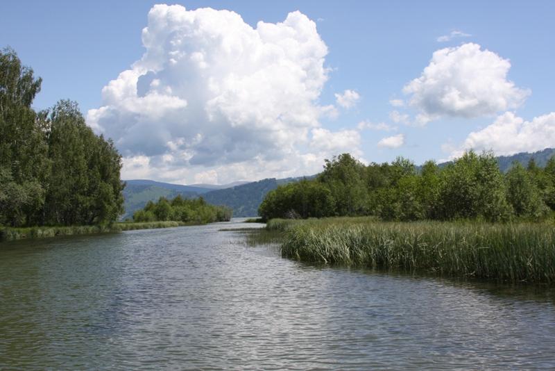 Река Тополевка.