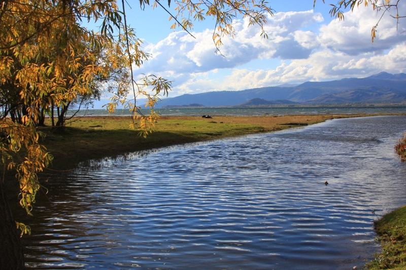 Окрестности озера Маркаколь.