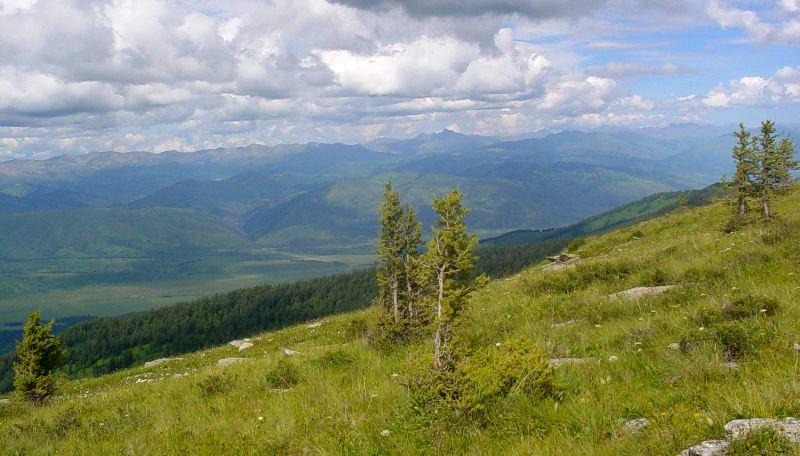 Вид на окрестности поселков Орловка и Бобровка.