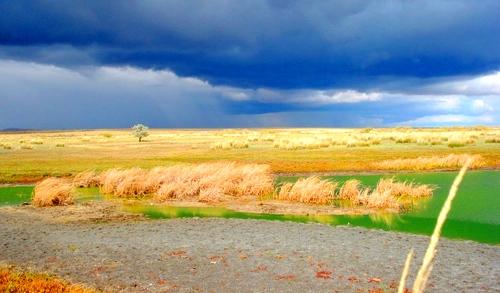 Пересыхающая часть озера Аксуат.