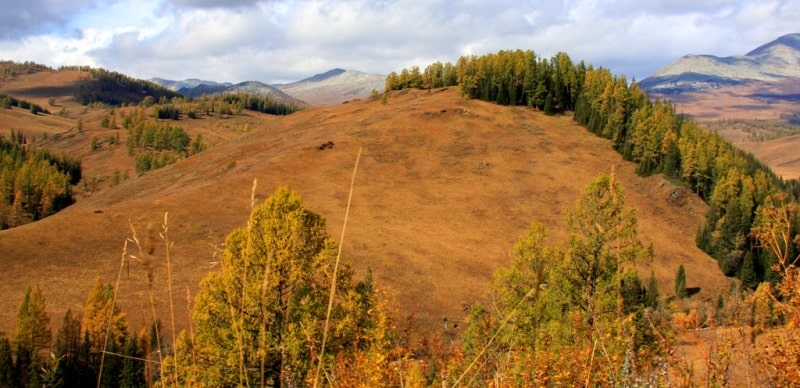 Sights of West Altai Nature Reserve.