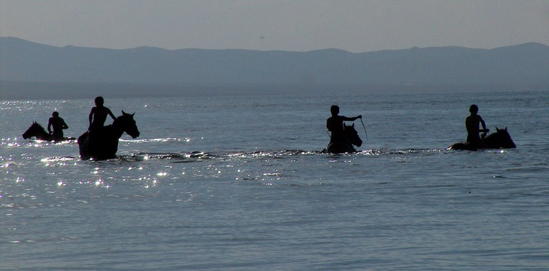 Купание лошадей в водах озера.