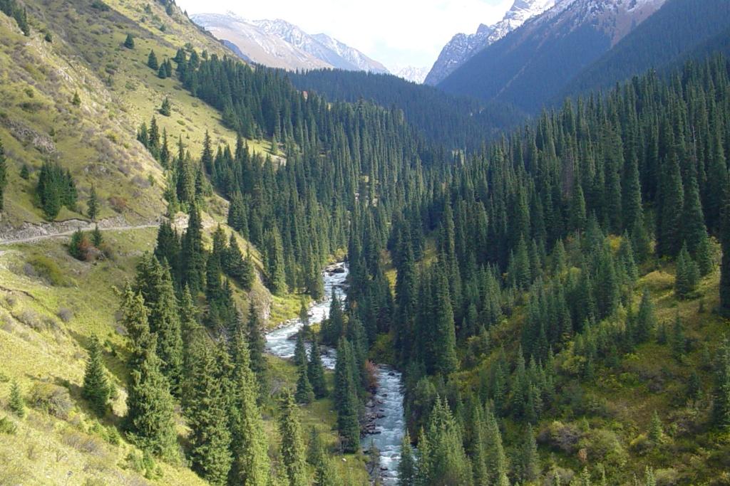 Gorge Arashan.