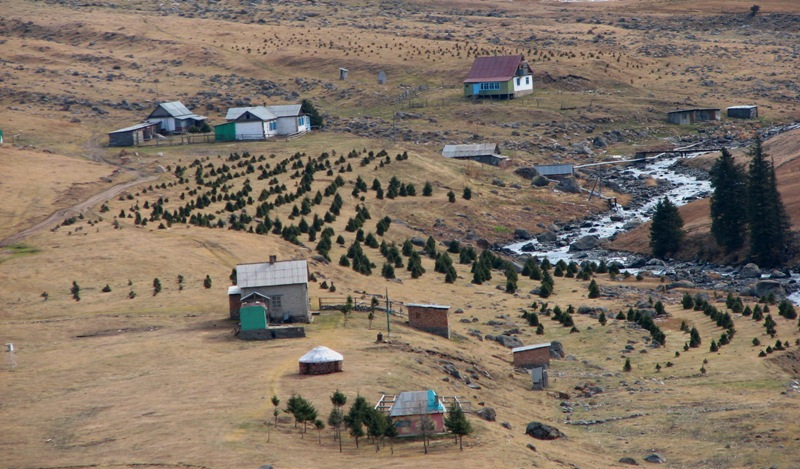 The Kind on natural boundary the Altyn-Arashan.