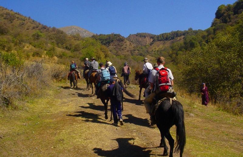 Прогулка на лошадях в горы Ферганского хребта.
