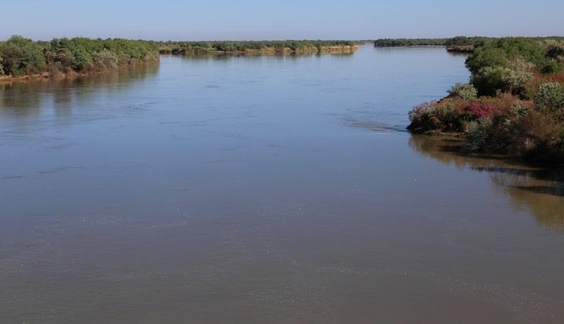 Реки Центральной Азии. Река Сырдарья. Кызылординская область.