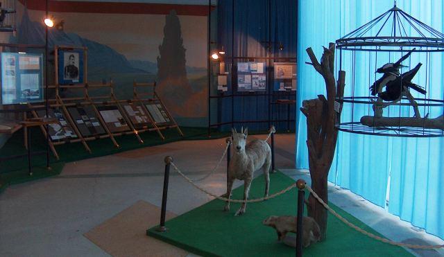 В музее Пржевальского недалеко от города Каракол.