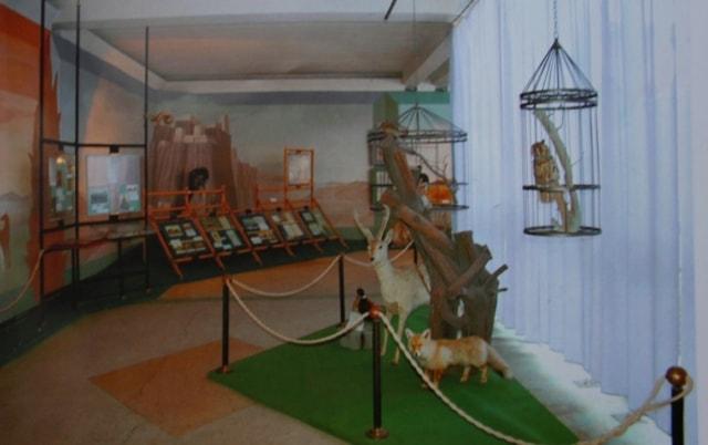 Музей Пржевальского в окрестностях Каракола.