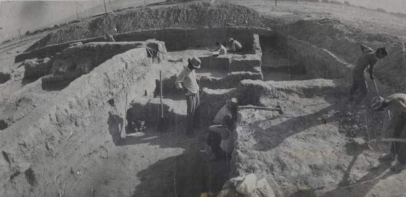 Археологические раскопки. 1984 год.