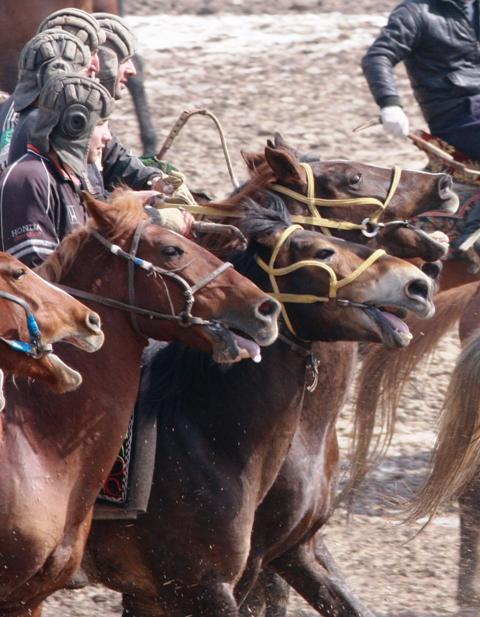 Лошади мечутся в одном порыве, всадник инстинктивно управляет лошадью, на самом деле управление, это общее движение массы.
