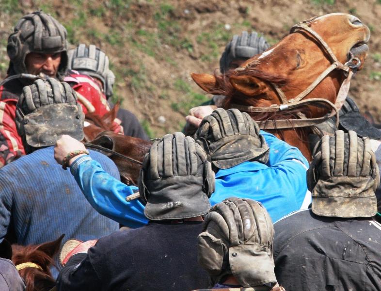 Порой видны одни головы участников бузкаши и лошадей.