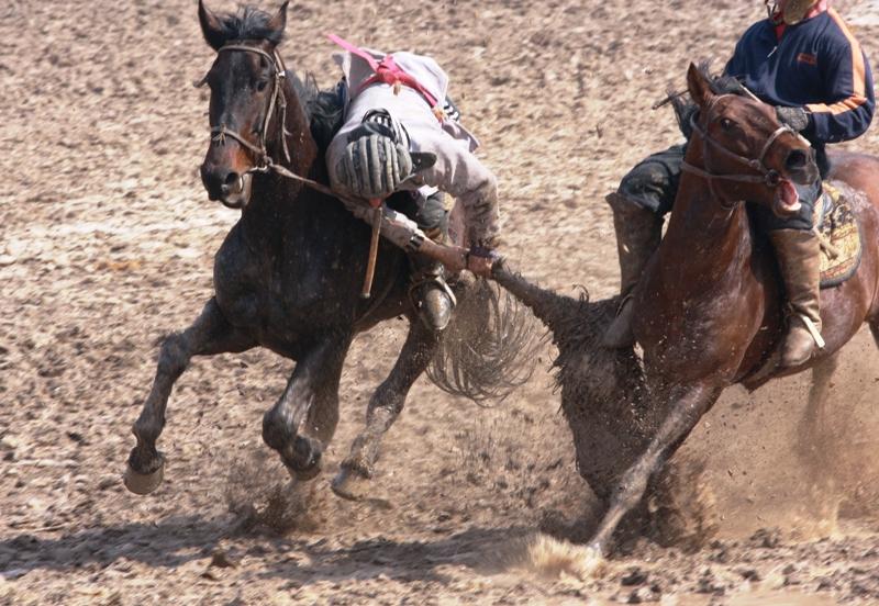 Попытка вырвать козла из рук бузкаши на ходу, кажется это непросто дело.
