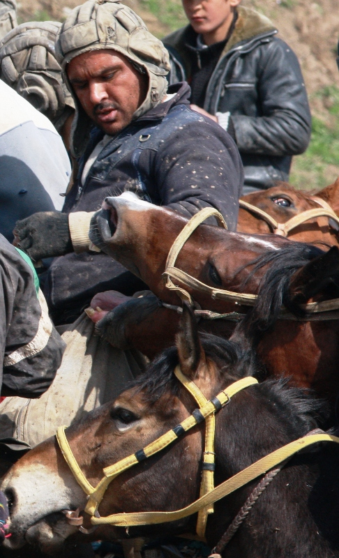 """Бузкаши, это соревнование по русски называется  """"козлодрание"""". Это национальная конная игра кочевников Средней Азии, известная еще со времен Чингисхана.  Постепенно она стала и любимой игрой земледельцев."""