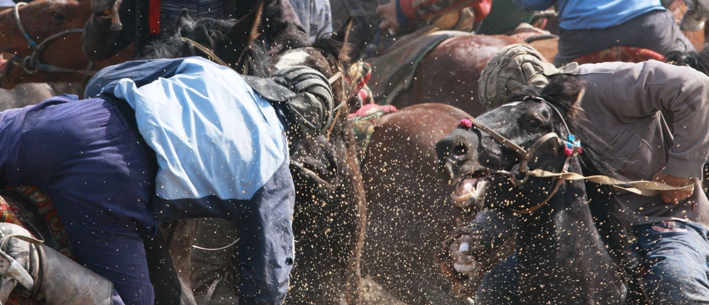 Вот так надо свеситься с лошади, чтобы попытаться дотянуться до козла лежащего на земле.