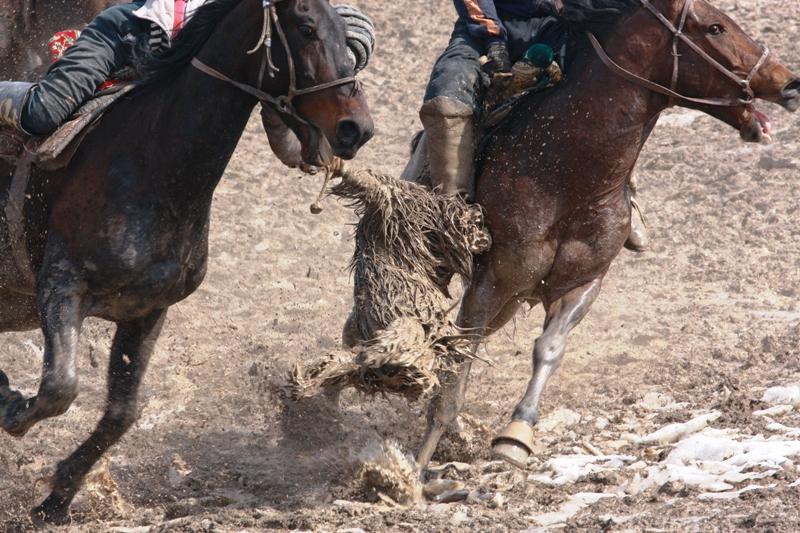 О лошадях бузкаши говорят вполне серьезно, дескать, настоящие спортивные кони могут самостоятельно принимать решения - всаднику остается только крепче держаться и демонстрировать чудеса сноровки и интеллекта.