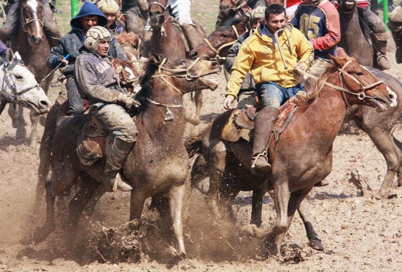 До 20 - 25 лет лошади честно несут свою не¬легкую службу.