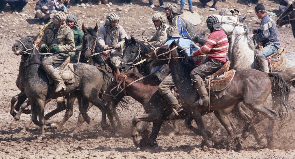 Особые требования предъявляются к экипировке лошадей.
