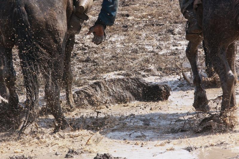 На всадника принято надевать широкий чапан (халат) из очень плотной ткани.