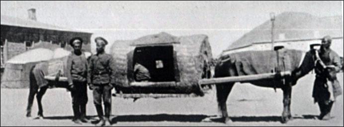 Pamir wagon.