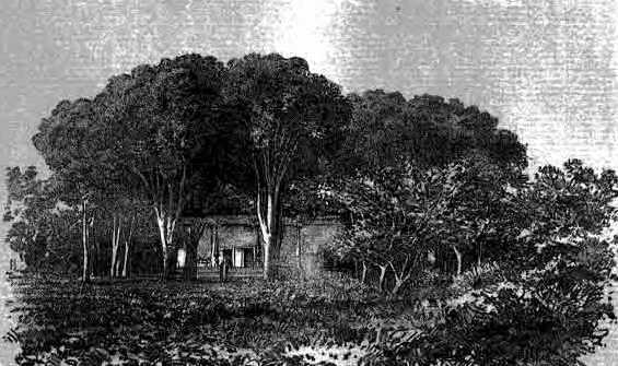 Хивинское загородное помещение под Хивой.