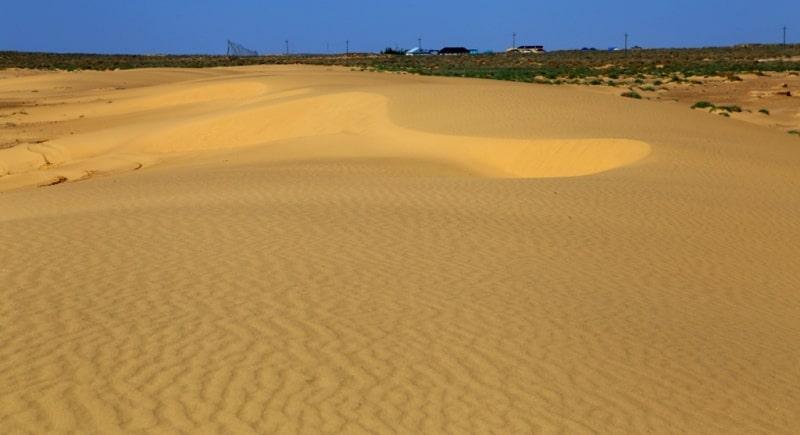 В пустынях Центральной Азии.
