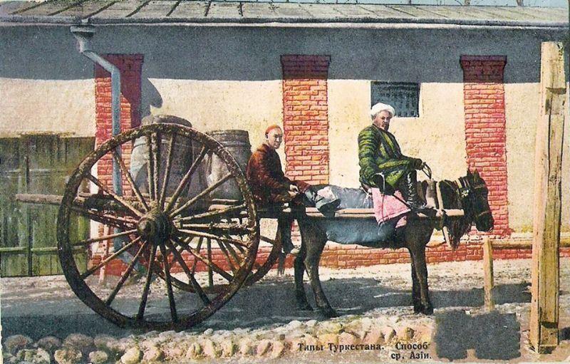 A bullock cart in Samarkand. 1903.