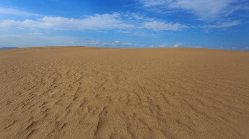 В пустыне Кызылкум. Бухарская область.